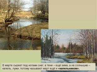 В марте сыреет под ногами снег, в тени – ещё зима, а на солнышке – капель, лу
