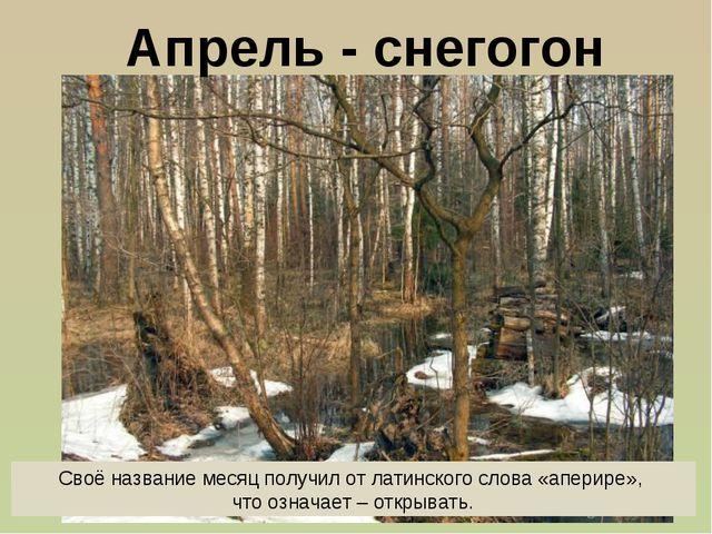Апрель - снегогон Своё название месяц получил от латинского слова «аперире»,...