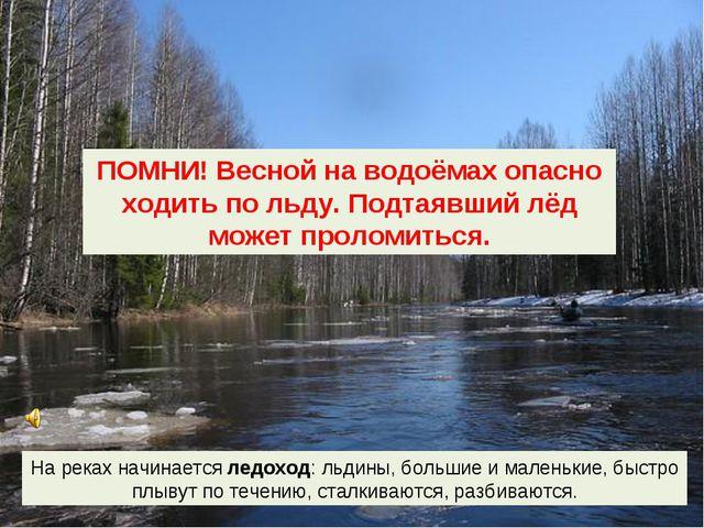 На реках начинается ледоход: льдины, большие и маленькие, быстро плывут по те...