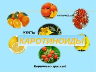 ЖЕЛТЫЙ ОРАНЖЕВЫЙ Коричнево-красный КАРОТИНОИДЫ