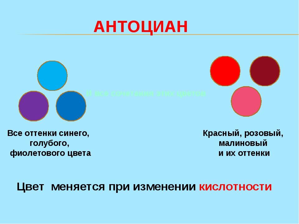 Все оттенки синего, голубого, фиолетового цвета Красный, розовый, малиновый...