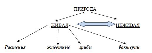 http://www.informio.ru/images/shema1.png
