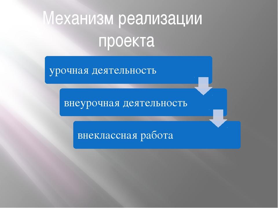 Механизм реализации проекта