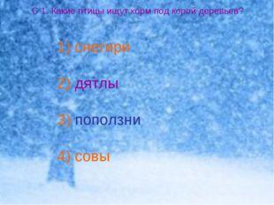 С 1. Какие птицы ищут корм под корой деревьев? снегири дятлы поползни совы