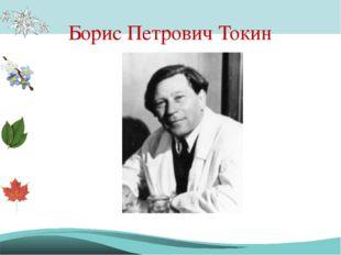 Борис Петрович Токин