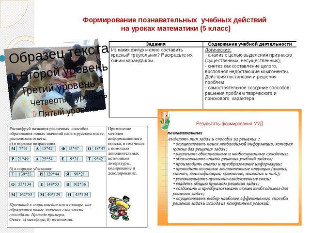 Формирование познавательных учебных действий на уроках математики (5 класс)
