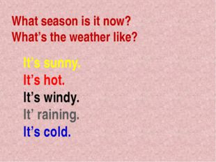What season is it now? What's the weather like? It's sunny. It's hot. It's wi