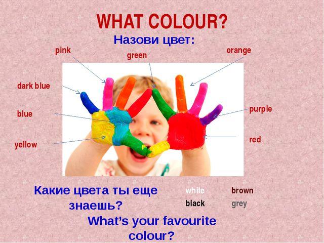 WHAT COLOUR? Назови цвет: pink orange dark blue purple red blue yellow Какие...