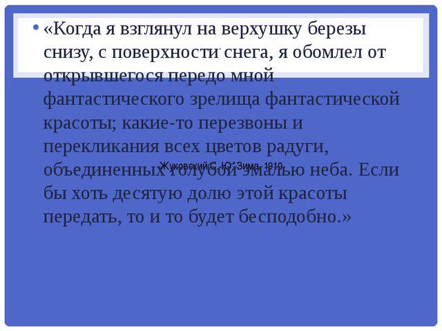 . Жуковский С. Ю. Зима. 1910 «Когда я взглянул на верхушку березы снизу, с по...