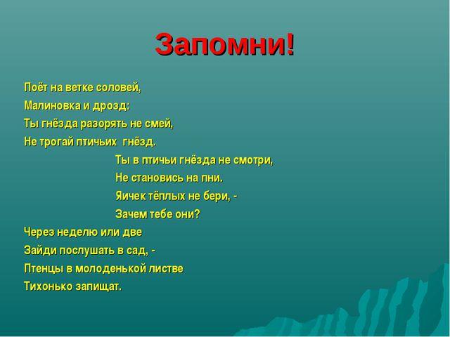 Запомни! Поёт на ветке соловей, Малиновка и дрозд: Ты гнёзда разорять не смей...