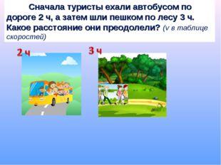 Сначала туристы ехали автобусом по дороге 2 ч, а затем шли пешком по лесу 3