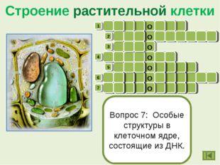 Строение растительной клетки в о о п л я д р о ц б о л х х к ы а у о л и т а