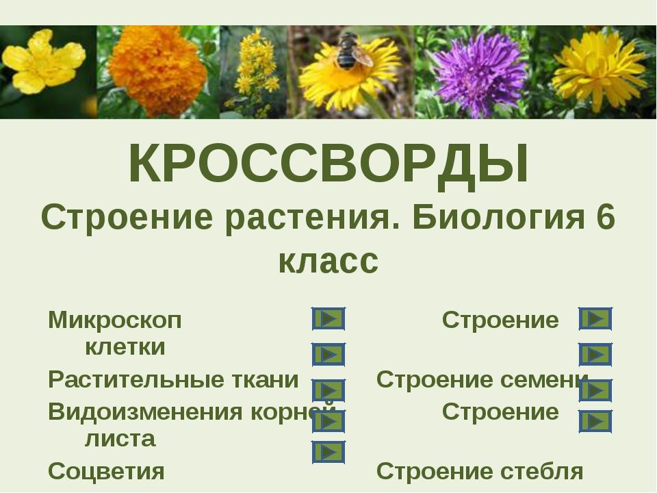 КРОССВОРДЫ Строение растения. Биология 6 класс МикроскопСтроение клетки Р...