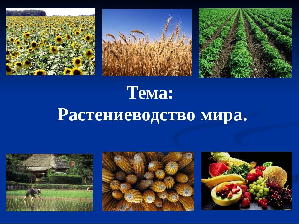 Тема: Растениеводство мира.