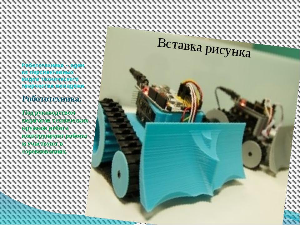Робототехника – один из перспективных видов технического творчества молодёжи...