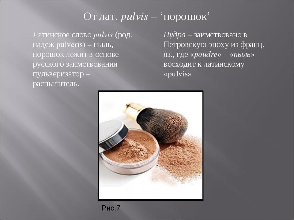 От лат. pulvis – 'порошок' Латинское слово pulvis (род. падеж pulveris) – пыл...