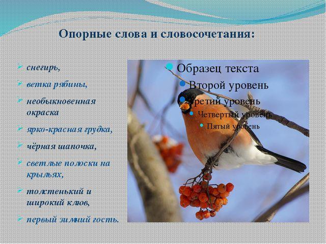 Изложение снегирь по русскому языку 5 классстрахова