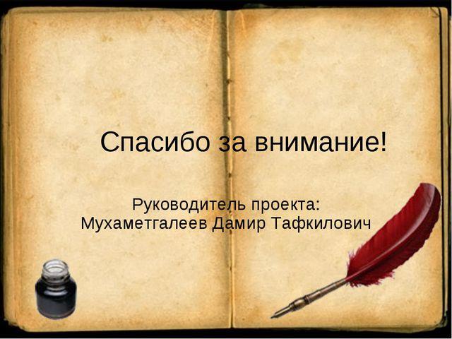 Спасибо за внимание! Руководитель проекта: Мухаметгалеев Дамир Тафкилович