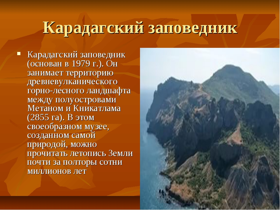 Карадагский заповедник Карадагский заповедник (основан в 1979 г.). Он занимае...