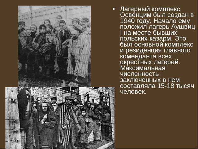 Лагерный комплекс Освенцим был создан в 1940 году. Начало ему положил лагерь...