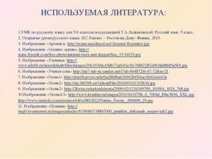 ИСПОЛЬЗУЕМАЯ ЛИТЕРАТУРА: 1.УМК по русскому языку для 5-9 классов под редакцие
