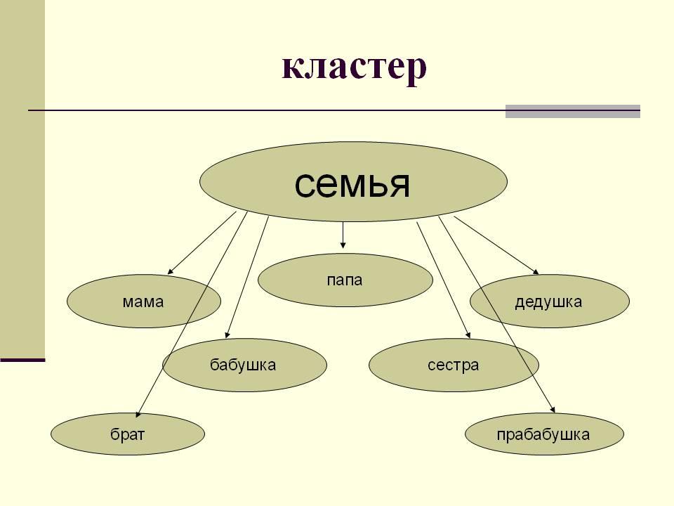 http://900igr.net/datas/obschestvoznanie/Rod-i-semja/0008-008-Klaster.jpg