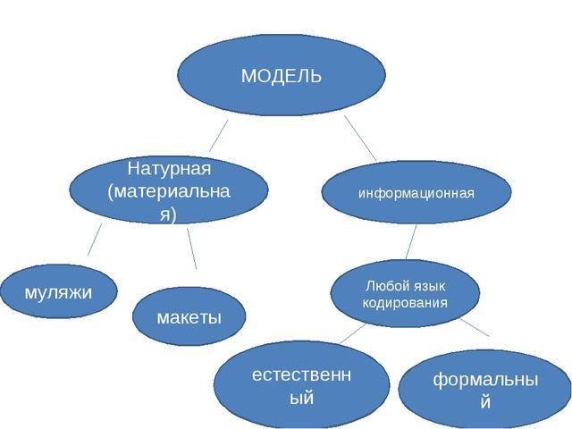 МОДЕЛЬ Натурная (материальная) информационная муляжи макеты Любой язык кодиро...
