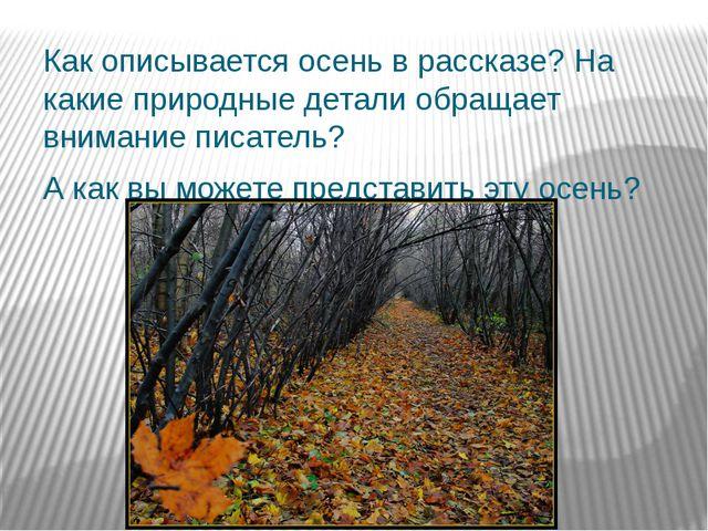 Как описывается осень в рассказе? На какие природные детали обращает внимание...