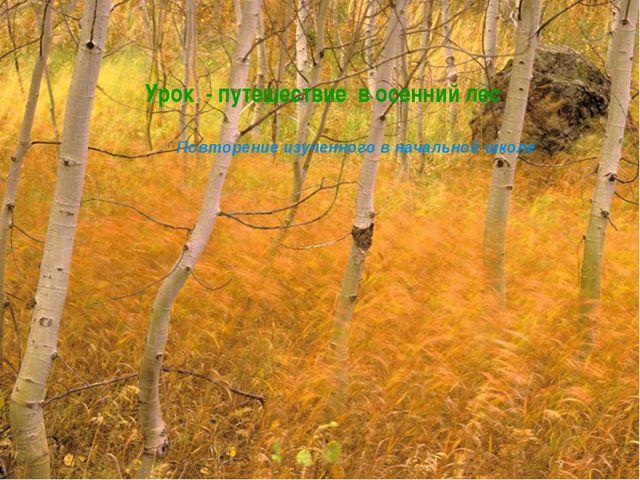 Урок - путешествие в осенний лес Повторение изученного в начальной школе