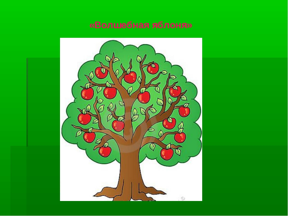 «Волшебная яблоня»