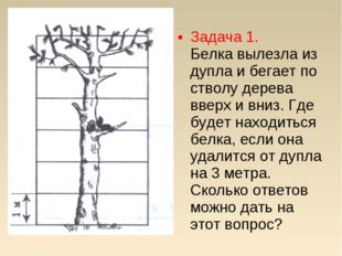 Задача 1. Белка вылезла из дупла и бегает по стволу дерева вверх и вниз. Где
