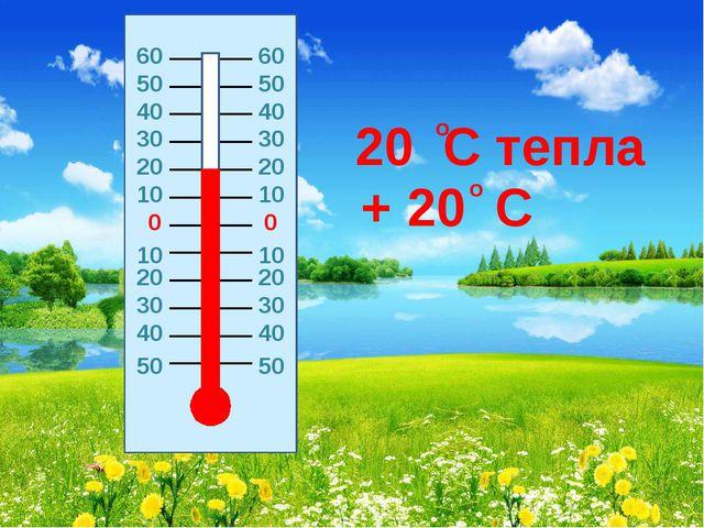 0 0 20 20 10 10 10 10 20 20 30 30 30 30 40 40 40 40 50 50 20 C тепла + 20 C о...