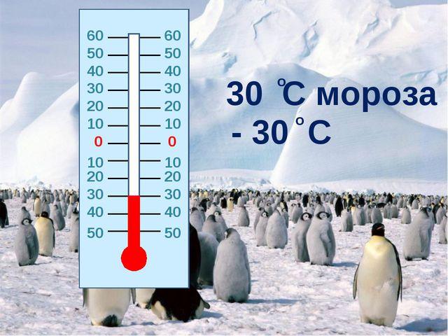 0 0 20 20 10 10 10 10 20 20 30 30 30 30 40 40 40 40 50 50 30 C мороза - 30 C...