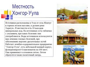 Местность Хонгор-Уула Источники расположены в 9 км от села Жемчуг в горном ле