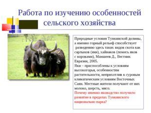 Работа по изучению особенностей сельского хозяйства Природные условия Тункинс