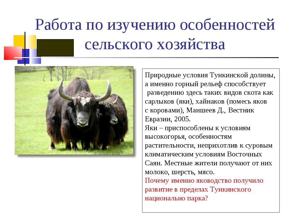 Работа по изучению особенностей сельского хозяйства Природные условия Тункинс...