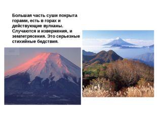 Большая часть суши покрыта горами, есть в горах и действующие вулканы. Случаю