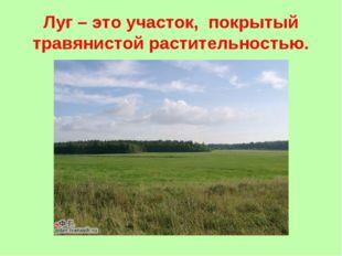 Луг – это участок, покрытый травянистой растительностью.