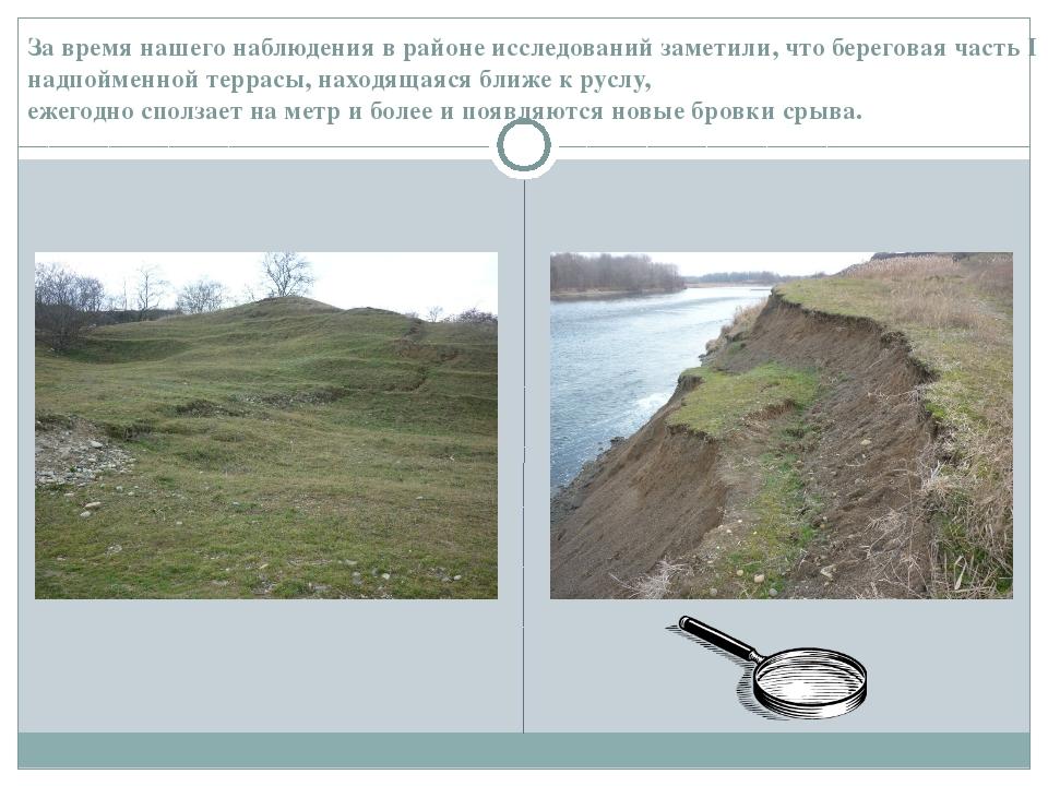 За время нашего наблюдения в районе исследований заметили, что береговая част...