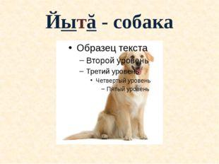 Йытă - собака