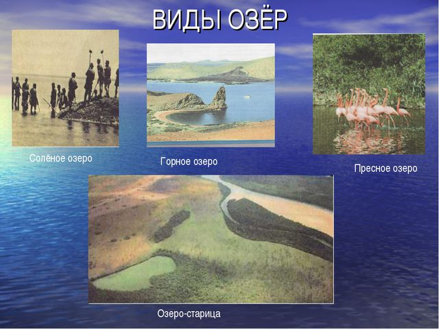ВИДЫ ОЗЁР Солёное озеро Горное озеро Пресное озеро Озеро-старица