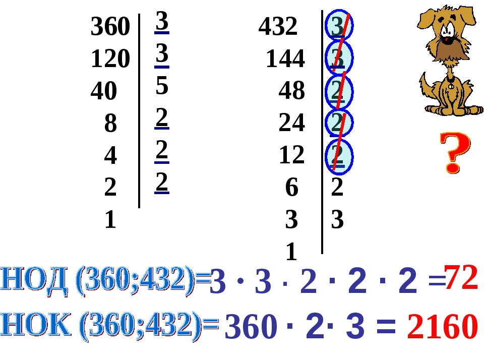 360 120 40 8 4 2 1 3 3 5 2 2 2 432 144 48 24 12 6 3 1 3 3 2 2 2 2 3 3 · 3 · 2...