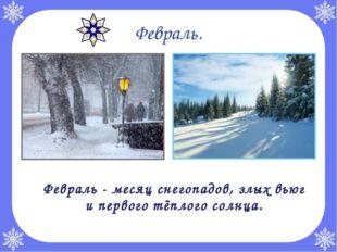 Февраль. Февраль - месяц снегопадов, злых вьюг и первого тёплого солнца.