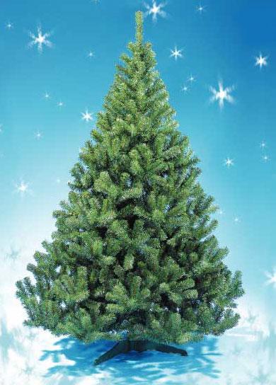 http://dekatop.com/wp-content/uploads/2009/12/tree_001.jpg