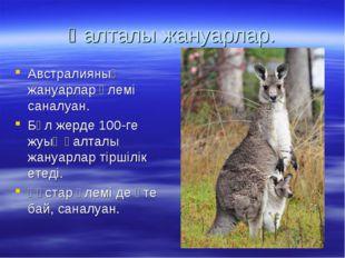 Қалталы жануарлар. Австралияның жануарлар әлемі саналуан. Бұл жерде 100-ге жу