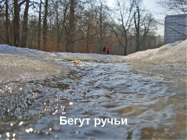 Бегут ручьи