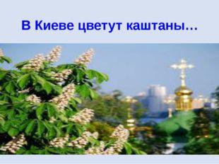 В Киеве цветут каштаны…
