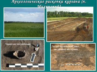 Археологические раскопки кургана (п. Михинский) Череп из погребения Пятно мог