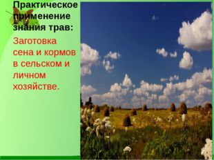 Практическое применение знания трав: Заготовка сена и кормов в сельском и лич