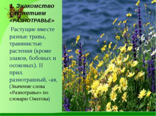 1. Знакомство с понятием «РАЗНОТРАВЬЕ» Растущие вместе разные травы, травянис